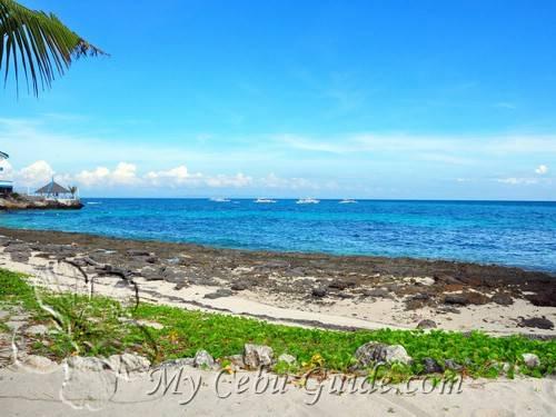 logon beach resort cebu hotels resorts my cebu guide