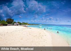 Cebu Hotels - Moalboal