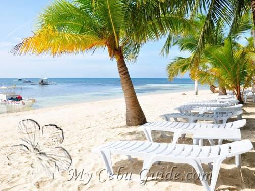 Malapascua Exotic Beach Resort The Front